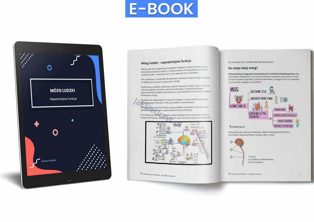 mózg funkcje ebook