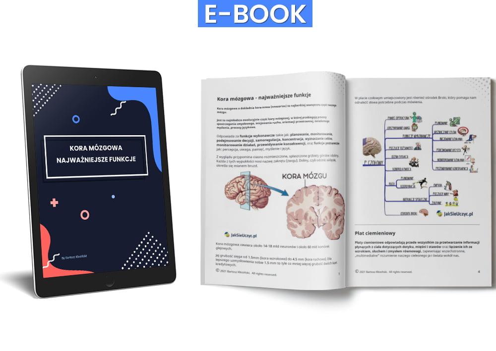 kora mózgowa - otwarty ebook