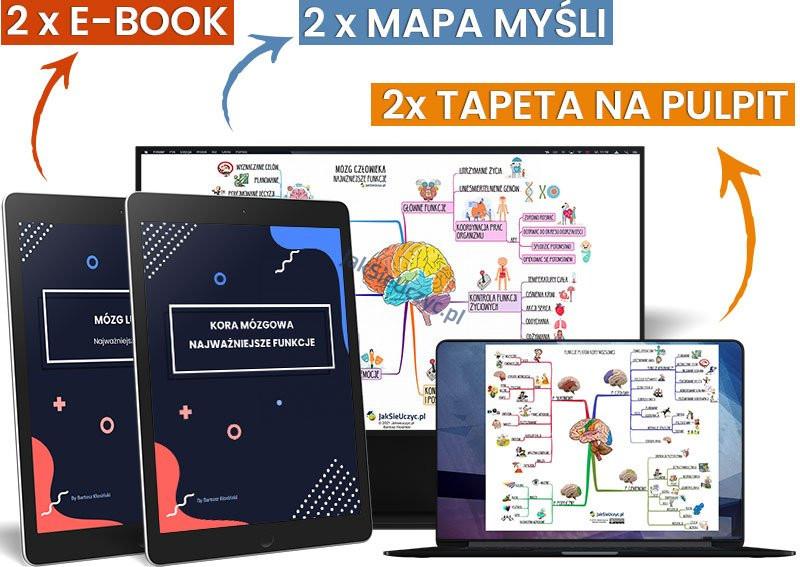 zestaw mózg mapa myśli